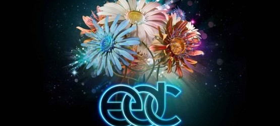 Fallecen Dos Personas En Electric Daisy Carnival Las Vegas 2014