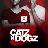 Catz n Dogz en Chile
