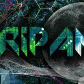 Tripantu Festival 2015