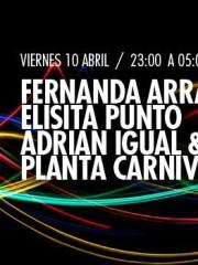 Fernanda Arrau, Elisita Punto, Diego Adrián & Planta Carnibora en MAMBA
