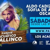 TRIP OF LOVE ▲ POOL PARTY · SÁBADO 13 FEB @ PARQUE MALLINCO