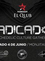 Radicados: Psychedelic Culture Gathering