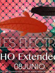 UMHO Extended Set / Miercoles Electronicos en Santo Remedio