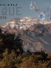 DAYTIME/MOONRISE CELEBRATION (12.00-2100)DS & ART GATHERING