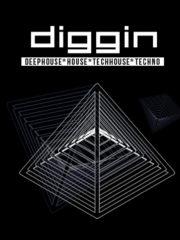 Diggin #8