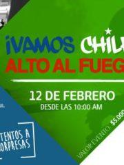 Vamos Chile Alto Al Fuego