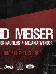 David Meiser en Chile