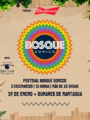 Budweiser presenta: Festival Bosque Sónico · Dunares de Mantagua